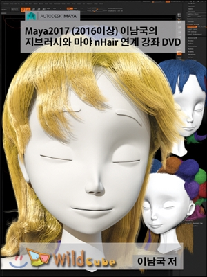 마야 2016 이남국의 캐릭터 리깅과 스키닝 [비디오녹화자료]